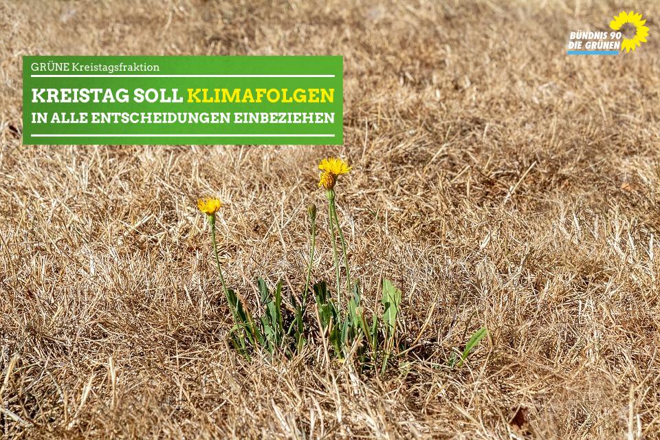GRÜNE: Klimaschutz im Kreistag etablieren – ULAN wird KULAN